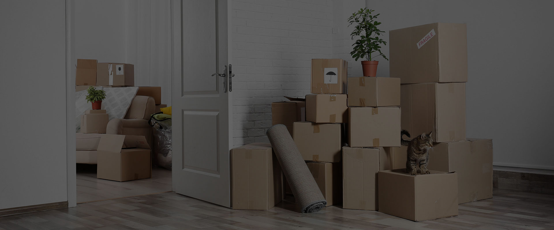 Image: boxes stacked in a living room